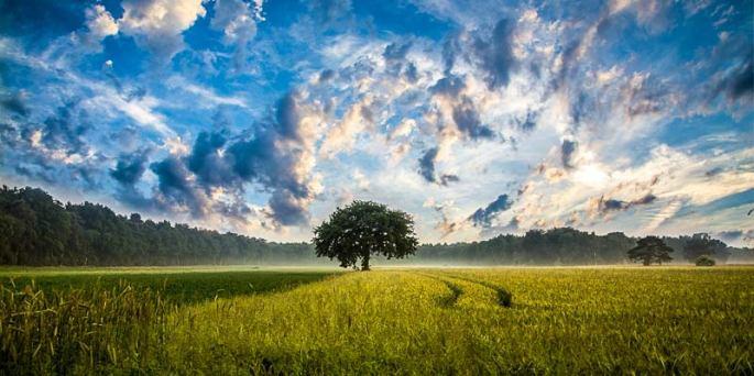 Trezire spirituala